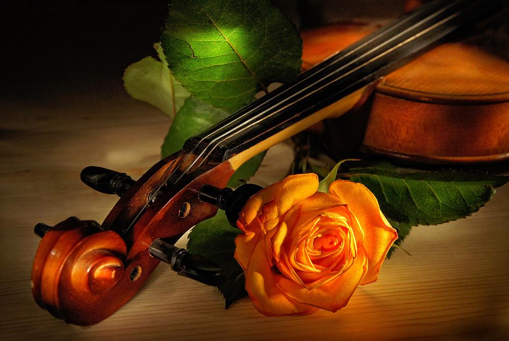 Днем рождения, картинка с днем рождения скрипачу